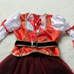 Pirate Thief Cosplay Anime Dress173183